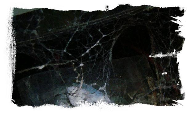 Im spinnennetz