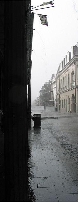 Elweir raining 2