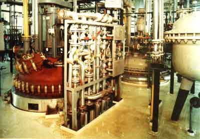 Synthetic pharmaceutical plant