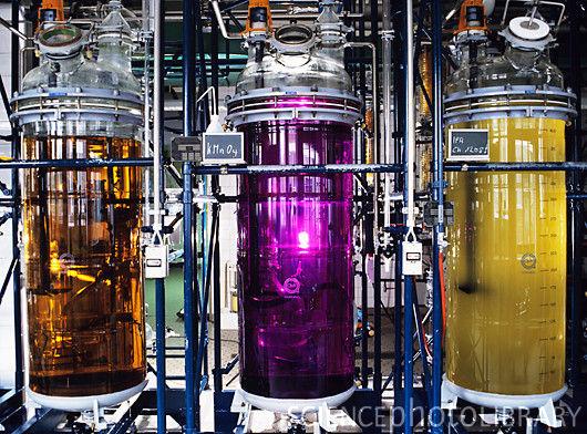 T8900410 pharmaceutical plant spl