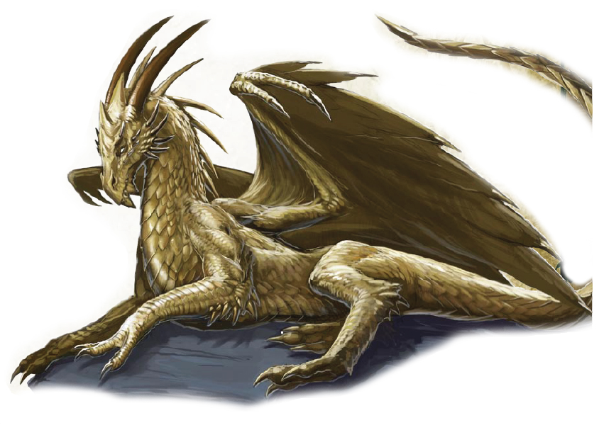 Young adult books dragons female