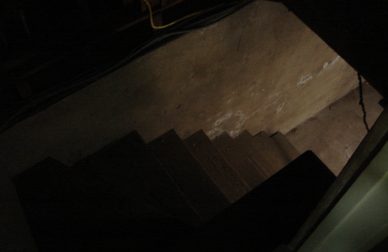 Stairs to the basement... who wants to go first?