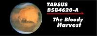 Tarsus 02