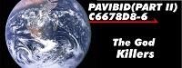 Pavibid ii 02