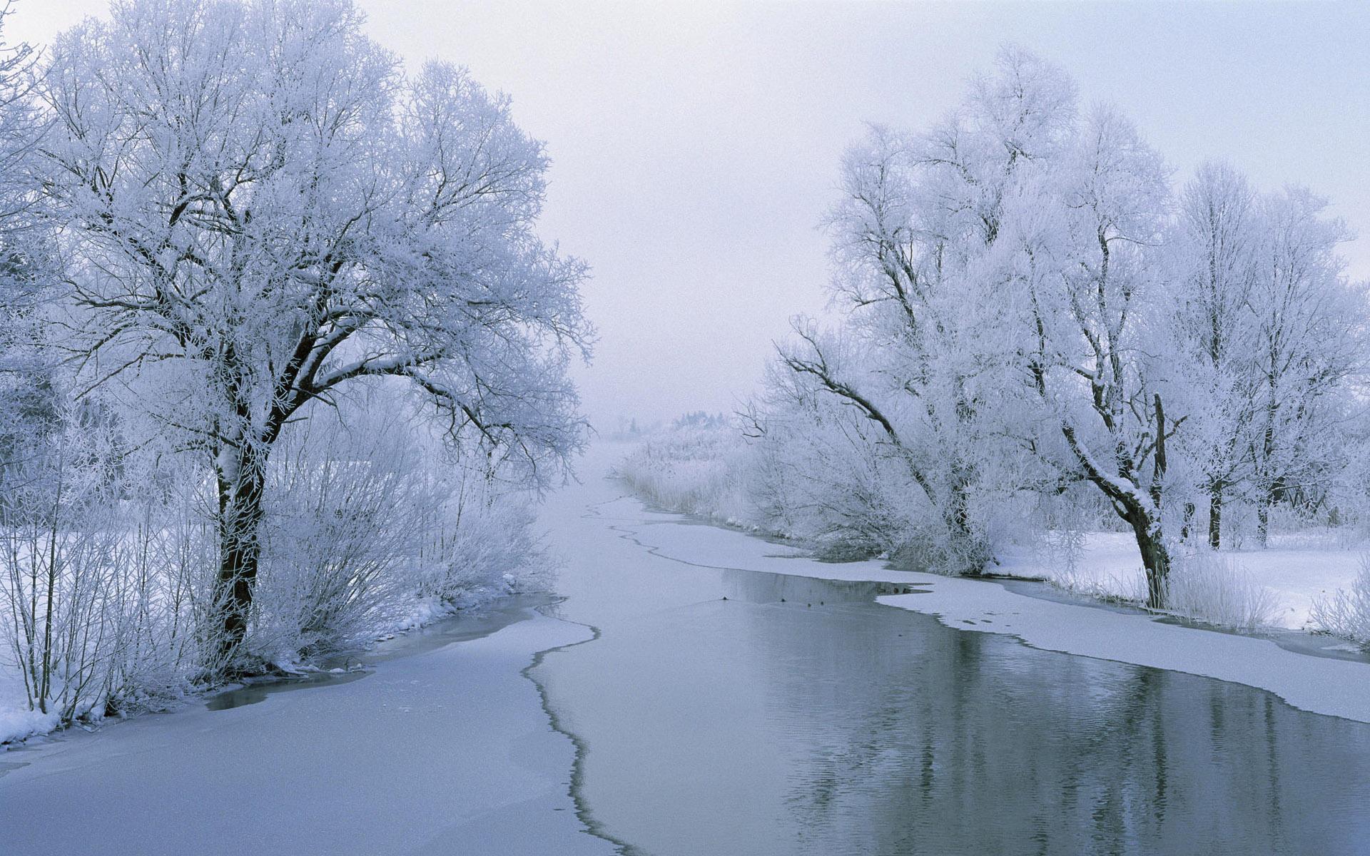 Frostfang