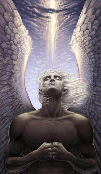 Male angel31