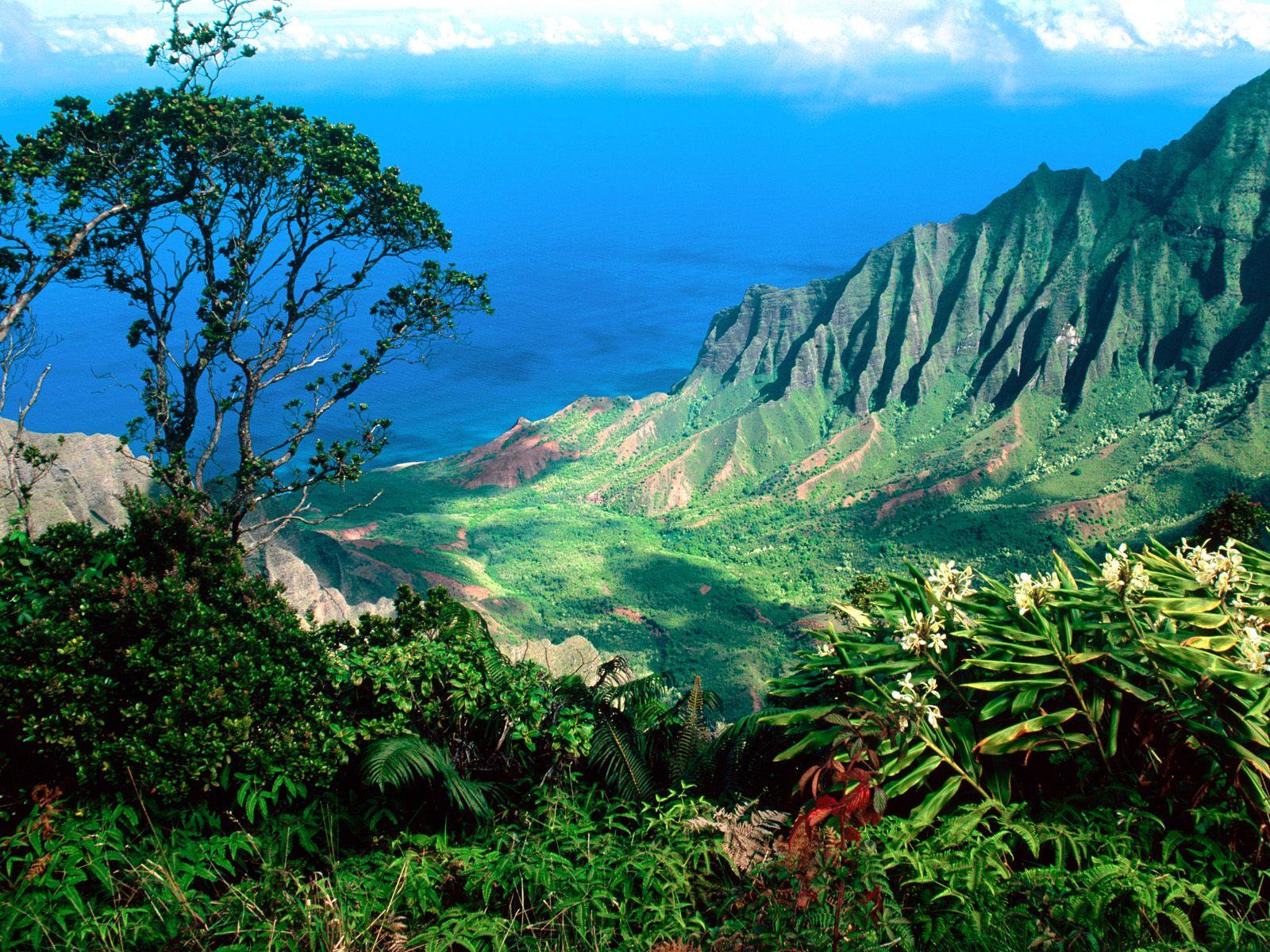 Kalalau valley  kauai  hawaii   pacific breezes