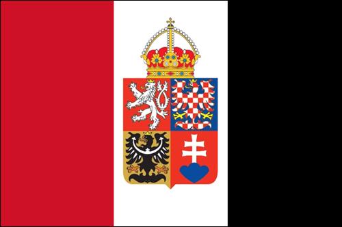 Skarl logo