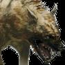 Hyena p