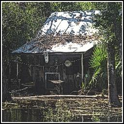Bayou shack