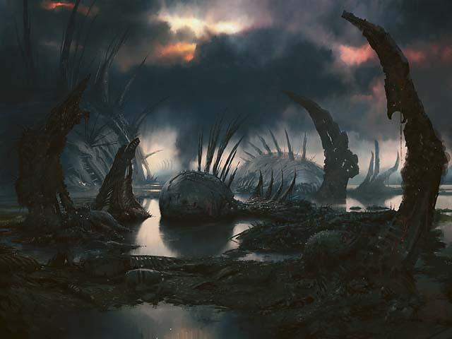 Swamp4 640