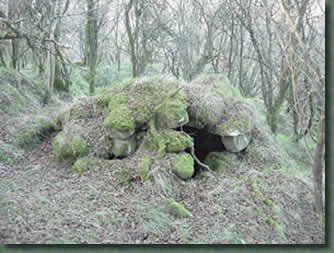Hutte celtique