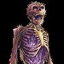 Boneshard skeleton p