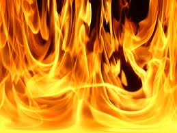 Fire feral