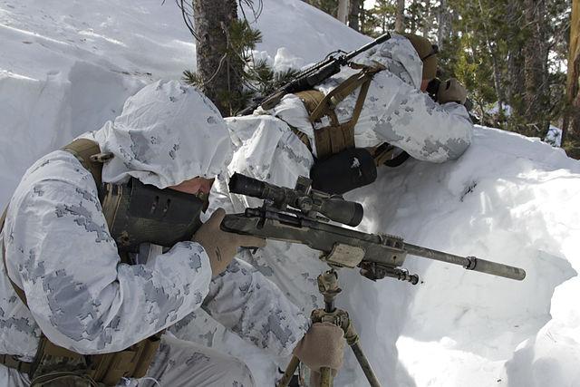 640px scout sniper snow marpat