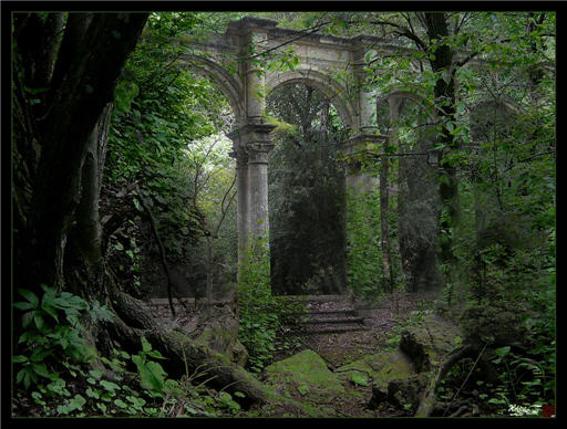 Forest ruins by helius flame