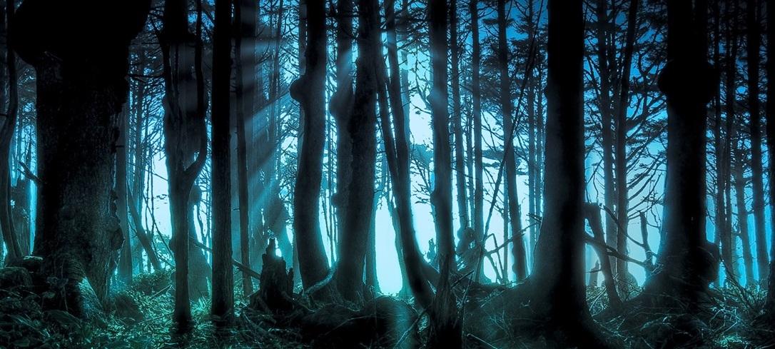 [Imagen: Mysterious_forest_wallpaper_1366x7682.jpg]