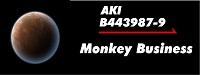 Aki 02