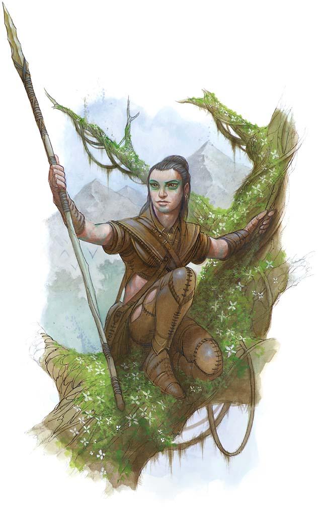 Pygmy treeclimber