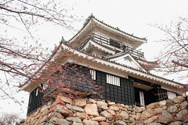 Japanese castles  hamamatsu jo by satinkitten d4uac7t