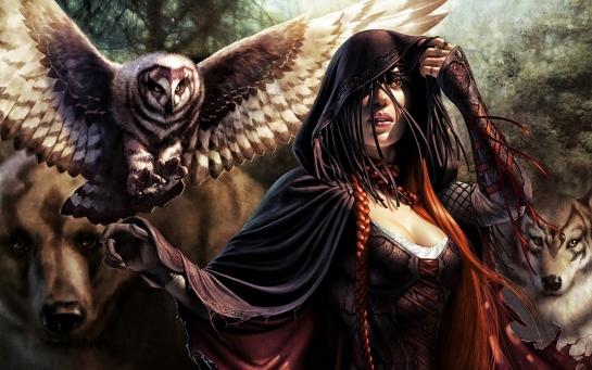 Women animals magic the gathering long hair corset fantasy art owls cloak artwork bears braids low angle shot wolves t2