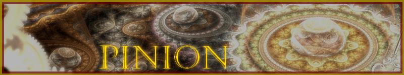 Banner pinion 1