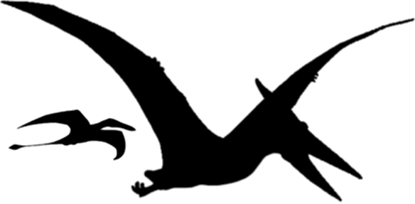 Pterosaur3