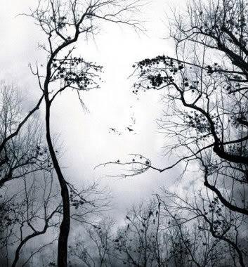 Beautiful tree goddess