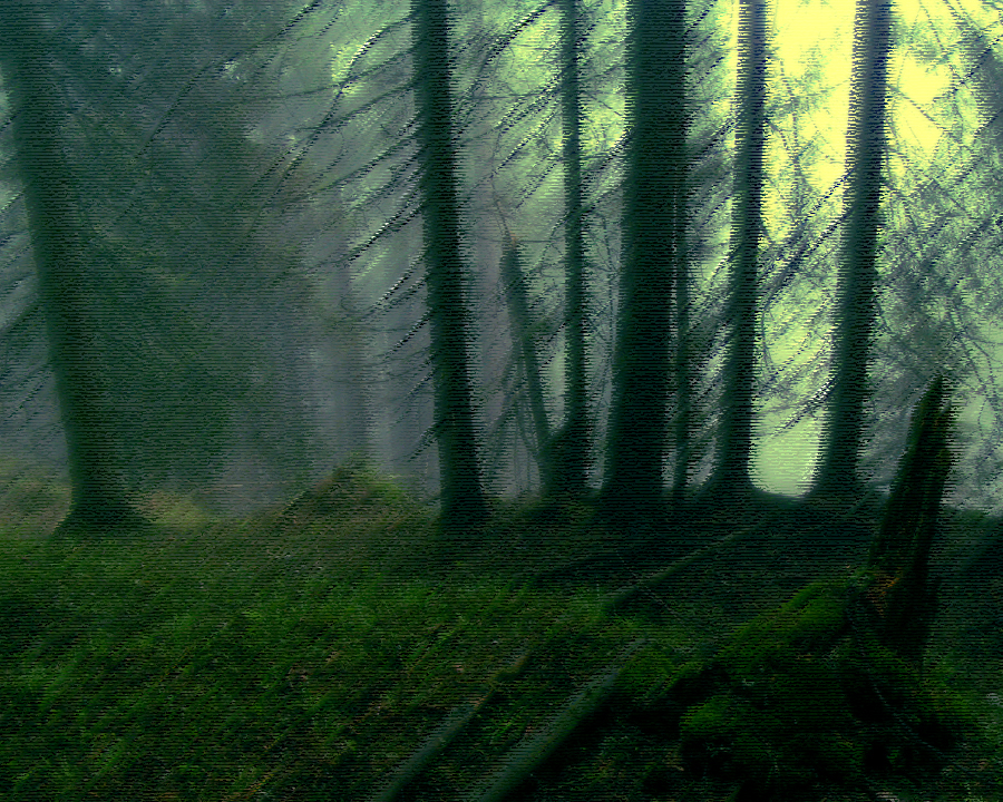Forestof wulf2
