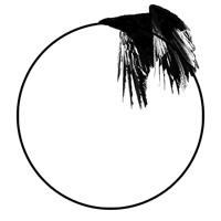 The raven s mark op