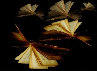 Flying books2