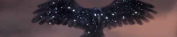 Starrybird