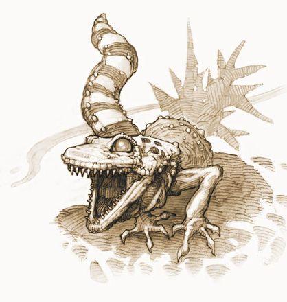 Fauna6