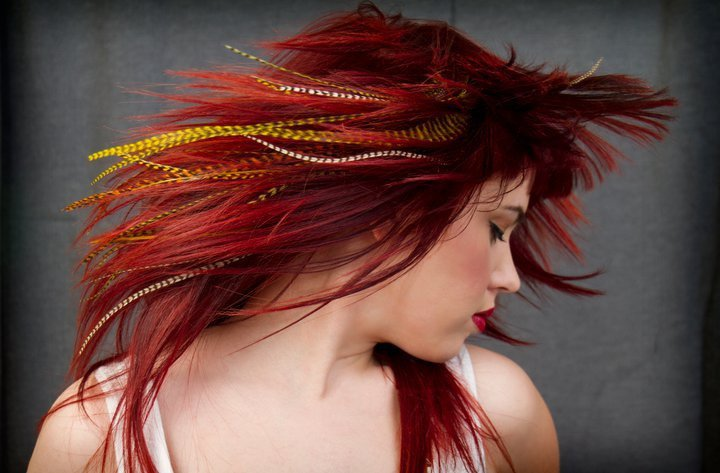 Redhead feathers.jpg