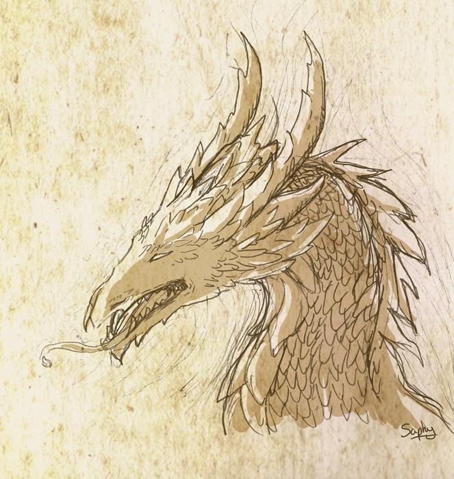 Sepna sketch72