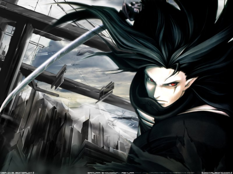 Vampire hunter d bloodlust 12516
