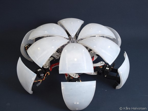 Bowler bot