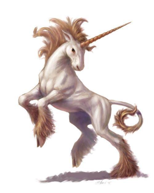 Unicorn art unicorns 9761374 500 625