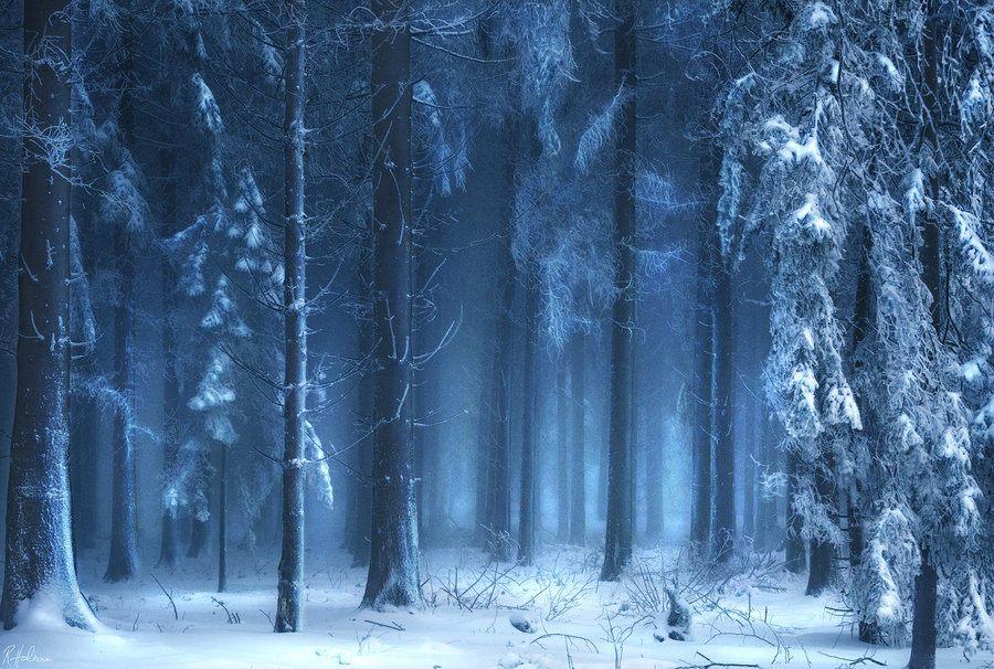 Zima na dobre