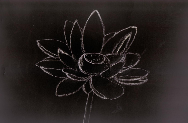 Lotusblossom3