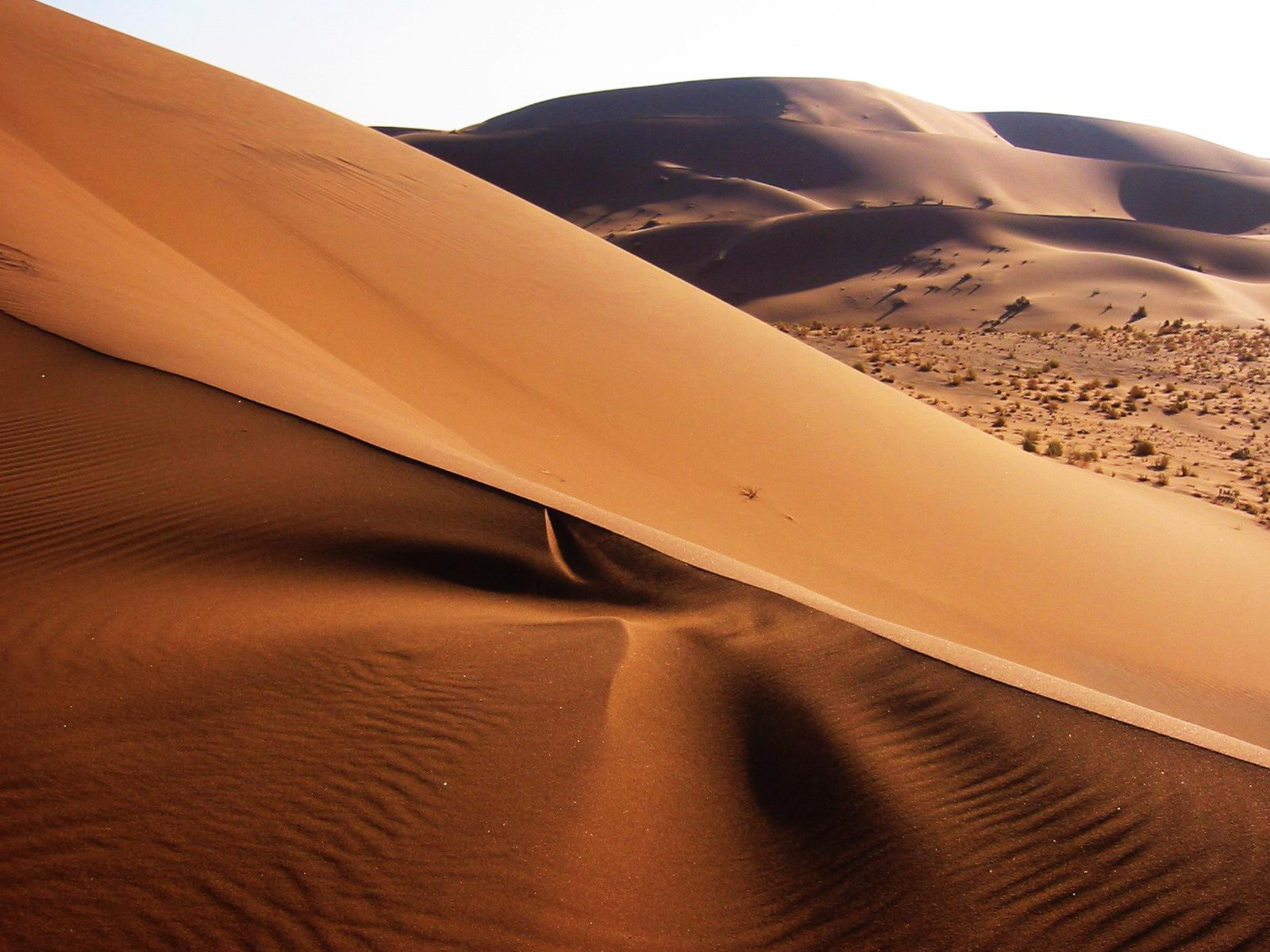 Namib desert namibia 2