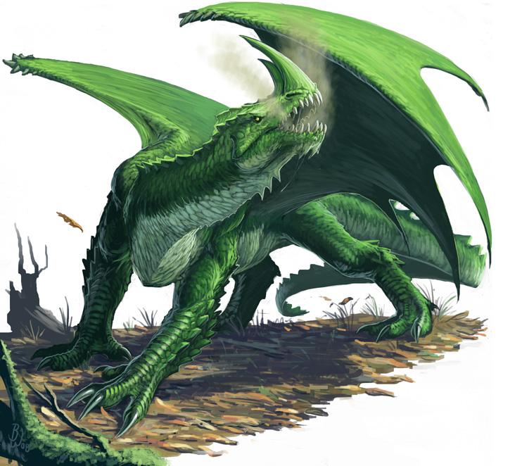 Green dragon by ben wootten