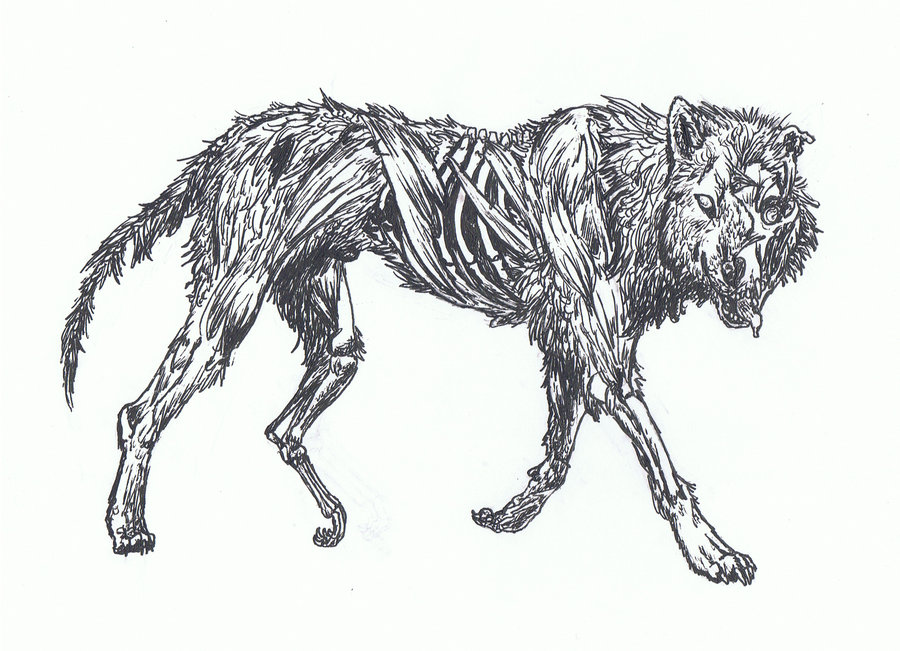 Zombie wolf by l lawliet death note