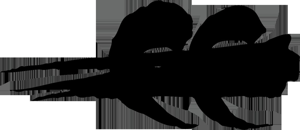 Logo tribe bone gnawers