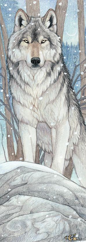 Toumas wyrgen   wolf form