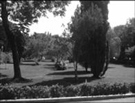 Park i shahr