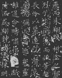 Xia writing