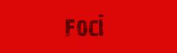 Francis button foci