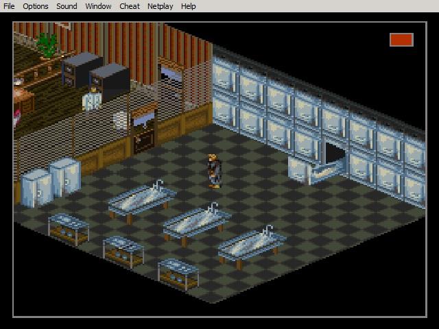 Snes morgue