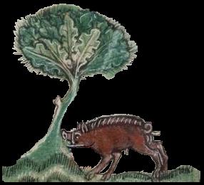 Taymouth hours boar